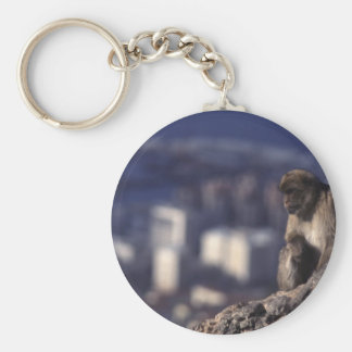 Pensive Monkey in Gibraltar Keychain