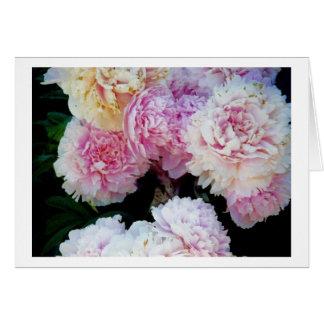 Peonies - photograph card