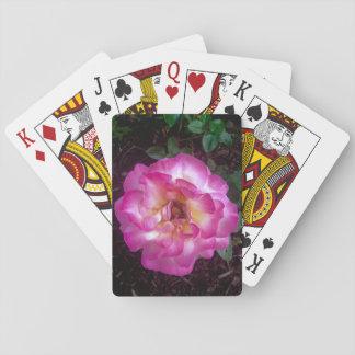 Peony card deck