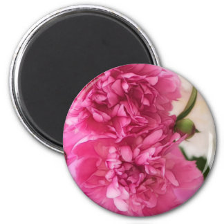 Peony Flowers Close-up Sketch 2 Inch Round Magnet