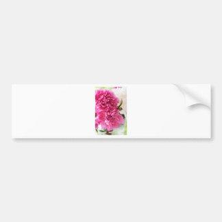 Peony Flowers Close-up Sketch Bumper Sticker