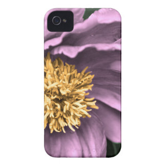 Peony Rain in Color iPhone 4 Covers