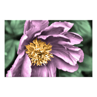 Peony Rain in Color Stationery Paper