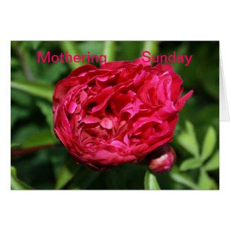Peony Rose Mothering Sunday Card