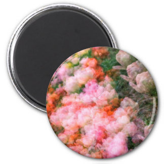 Peony Tulips in Full Bloom 2 Inch Round Magnet
