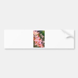Peony Tulips in Full Bloom Bumper Sticker