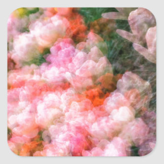 Peony Tulips in Full Bloom Square Sticker