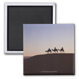 People riding camels, Morocco Magnet
