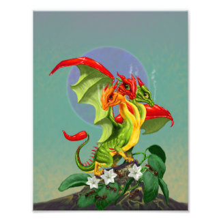 Peppers Dragon 8.5x11 Print
