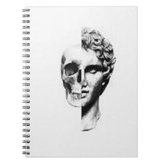 Perceptions Notebooks