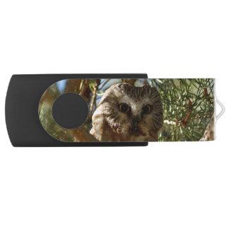 Perched Northern Saw-Whet Owl Swivel USB 3.0 Flash Drive