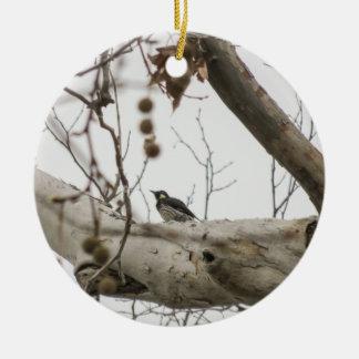 Perched Woodpecker - Ceramic Ornament