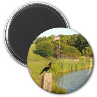Perching Red Winged Bird Magnet