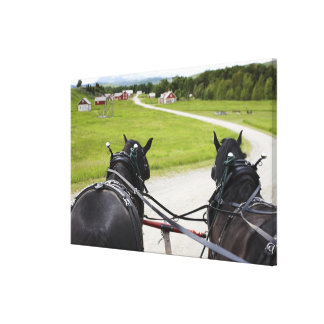 Perchon horses pulling cart  against historic canvas print