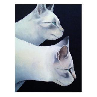 Percival & Lancelot Postcard