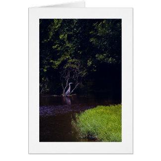 Percival's Isle, Lynchburg Virginia Card