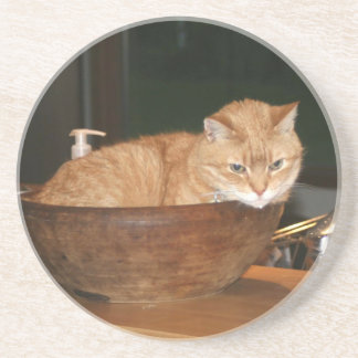 Percy the cat in bowl coaster