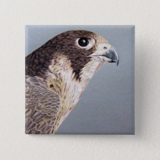 Peregrine Falcon 2 Inch Square Button