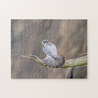 Peregrine Falcon at the Palisades Interstate Park Jigsaw Puzzle