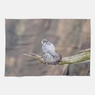 Peregrine Falcon at the Palisades Interstate Park Kitchen Towel