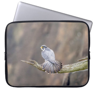Peregrine Falcon at the Palisades Interstate Park Laptop Sleeve