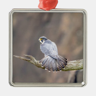 Peregrine Falcon at the Palisades Interstate Park Metal Ornament