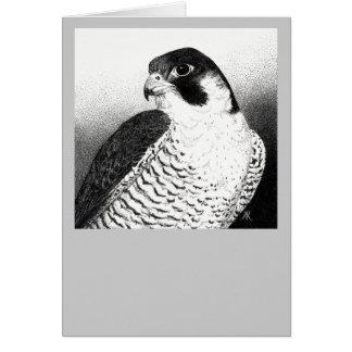 Peregrine Falcon Card