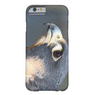 Peregrine Falcon in Profile Barely There iPhone 6 Case