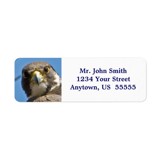 Peregrine Falcon Label Return Address Label