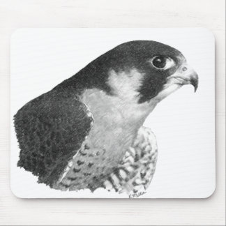 Peregrine Falcon-Pencil Mouse Pad