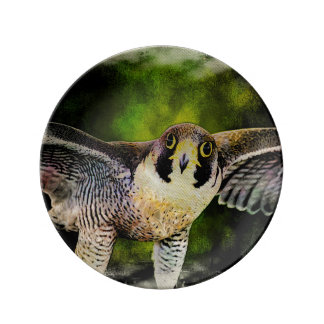 Peregrine Falcon Porcelain Plate
