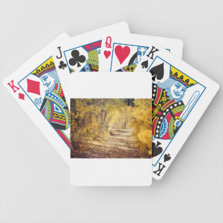 Perfect Afternoon Bicycle Playing Cards