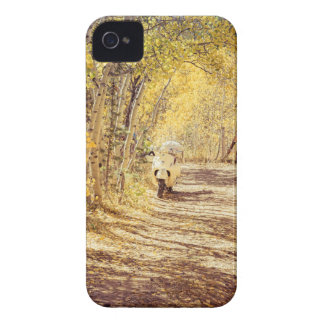 Perfect Afternoon Case-Mate iPhone 4 Case