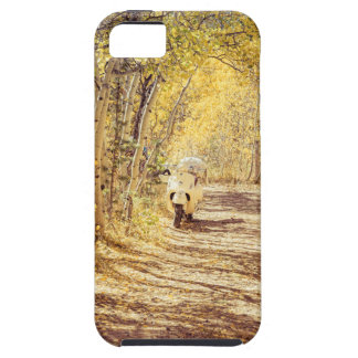 Perfect Afternoon iPhone 5 Cases