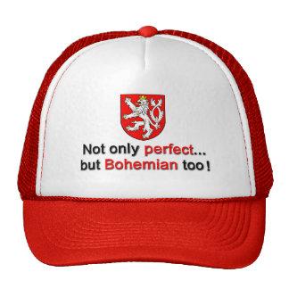 Perfect Bohemian Trucker Hat