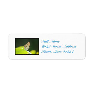 Perfect Butterfly Return Address Label