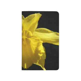 Perfect Daffodil Journals