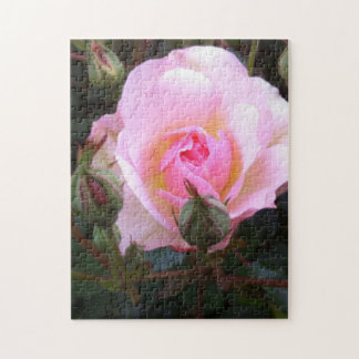 Perfect English Rose Jigsaw Puzzle