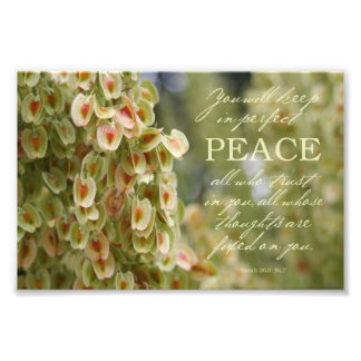 "Perfect Peace Photo Print 7x5"""