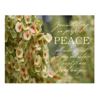 Perfect Peace Postcard