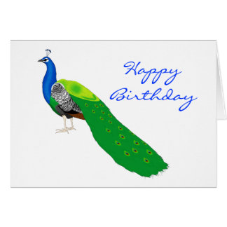 Perfect Peacock Birthday Greeting Card
