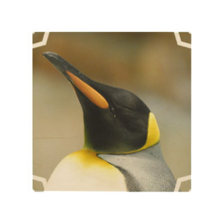 Perfect Penguin Wood Canvas