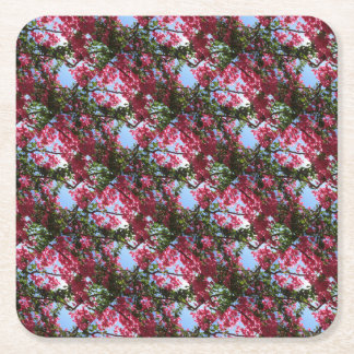 Perfect Pink Bougainvillea In Blossom Square Paper Coaster