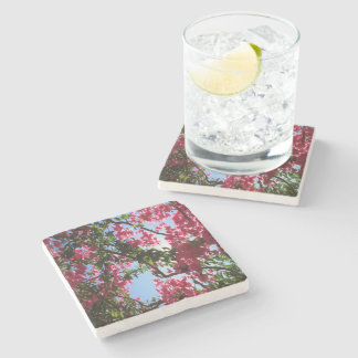 Perfect Pink Bougainvillea In Blossom Stone Coaster