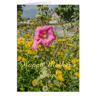 Perfect Pink Hollyhocks (Althaea) Card