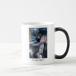 Perfect Reflection - God / Dog Magic Mug