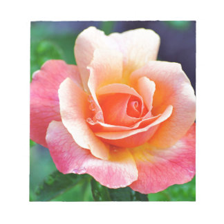 Perfect Rose in Bloom Notepads