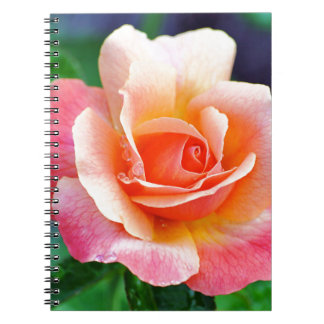 Perfect Rose in Bloom Spiral Notebook