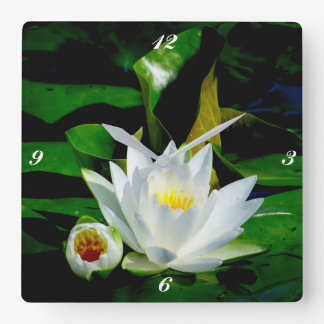 Perfect White Water Lily and Bud Wallclocks