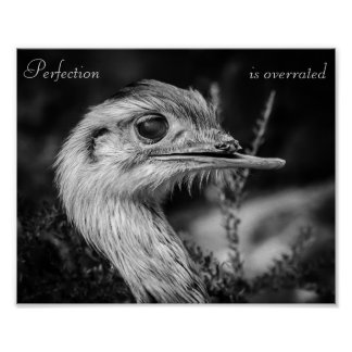 Perfection is Overrated - Poster